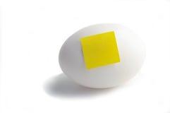 jajeczna notatka Obrazy Royalty Free