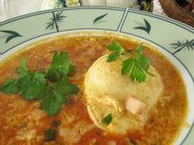 jajeczna polewka Zdjęcie Stock