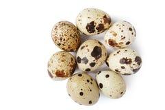 jajeczna przepiórka Fotografia Stock
