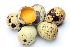 jajeczna przepiórka Obraz Royalty Free