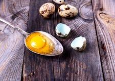 Jajeczna przepiórka z yolk w żelaznej łyżce na szarej drewnianej powierzchni Fotografia Royalty Free