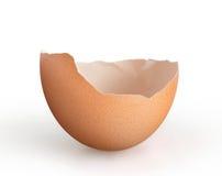Jajeczna skorupa Obrazy Stock