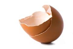 jajeczna skorupa Fotografia Stock
