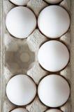 jajeczny chybianie Obrazy Stock