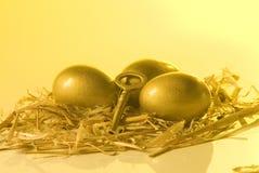 jajeczny gniazdeczko Obraz Stock