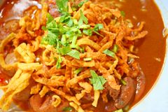 Jajeczny kluski w kurczaka currym zdjęcia royalty free
