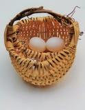 Jajeczny kosz Fotografia Stock