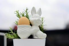 Jajeczny królik 2 i rozmaryny Zdjęcie Royalty Free