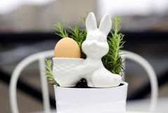Jajeczny królik 3 i rozmaryny Fotografia Royalty Free