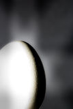 jajeczny lekki cień fotografia stock