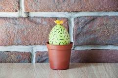 Jajeczny polowanie _ Niezwykły pomysł wielkanoc szczęśliwy Naturalny barwidło DIY i handmade Malujący jajko easter jajka wizerune zdjęcia stock