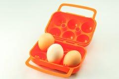 Jajeczny pudełko Zdjęcie Royalty Free