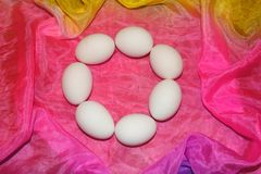 Jajeczny rejs zdjęcia stock