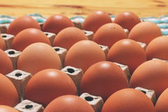 Jajeczny stojak Zdjęcia Royalty Free