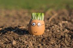jajeczny szczęśliwy Fotografia Stock