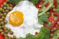 jajeczny warzywo Zdjęcia Stock