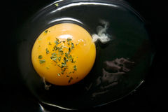 jajeczny yolk Zdjęcia Stock