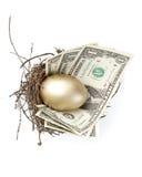 jajeczny złoto Obrazy Stock
