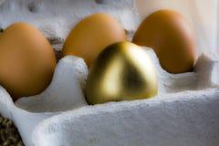 jajeczny złoty Fotografia Stock