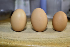 Jajek bezrobotni, składniki dla gotować Zdjęcie Stock