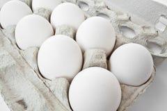 jajka biały Zdjęcia Stock