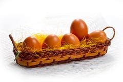 Jajka brown kurczak w koszu na białym tle dla wielkanocy Zdjęcie Stock