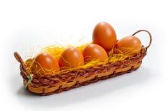 Jajka brown kurczak w koszu na białym tle dla wielkanocy Obraz Royalty Free
