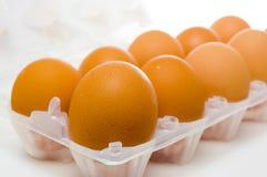 jajka dziesięć obraz stock