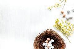 Jajka i gniazdeczko dla Easter na białym tle nakrywają veiw egzamin próbnego Obrazy Royalty Free