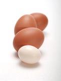 Jajka i jajko zdjęcie stock