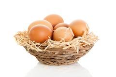 Jajka isolatedon białego tła karmowa koszykowa słoma obraz stock