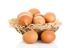 Jajka isolatedon białego tła karmowa koszykowa słoma zdjęcie stock