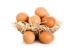 Jajka isolatedon tła biały jedzenie zdjęcie royalty free