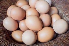 Jajka kłaść w łozinowym koszu Fotografia Stock