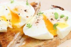 jajka kłusująca grzanka Zdjęcie Royalty Free