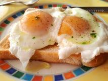 jajka kłusowali Zdjęcia Stock