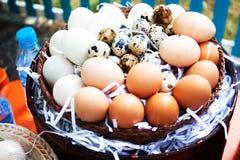 Jajka na jajka tle Zdjęcia Stock