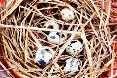 Jajka na jajka tle Zdjęcie Stock