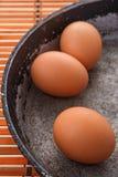 Jajka na niecce Fotografia Stock
