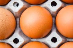 jajka na panelu Zdjęcia Stock