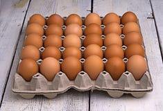 Jajka w papierowej tacy Fotografia Stock