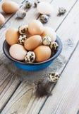 Jajka od kurczaka i przepiórki gospodarstwa rolnego w metalu rzucają kulą fotografia royalty free