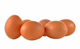Jajka odizolowywali białego tło obrazy royalty free
