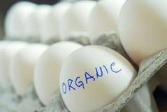 jajka organicznie zdjęcia royalty free