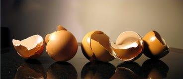 jajka panoramiczni Zdjęcie Royalty Free