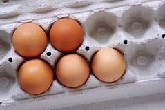 jajka pięć Obrazy Royalty Free