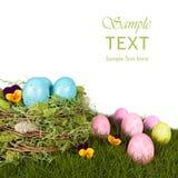 jajka ptasi błękitny gniazdeczko gnieździł się rudziki Fotografia Stock