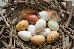 Jajka ptasi w gniazdeczku Obrazy Royalty Free