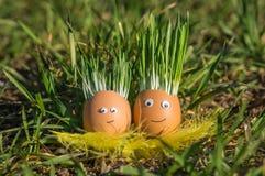 jajka szczęśliwi Fotografia Royalty Free