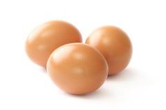 jajka trzy Obraz Royalty Free